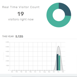 visitors-now